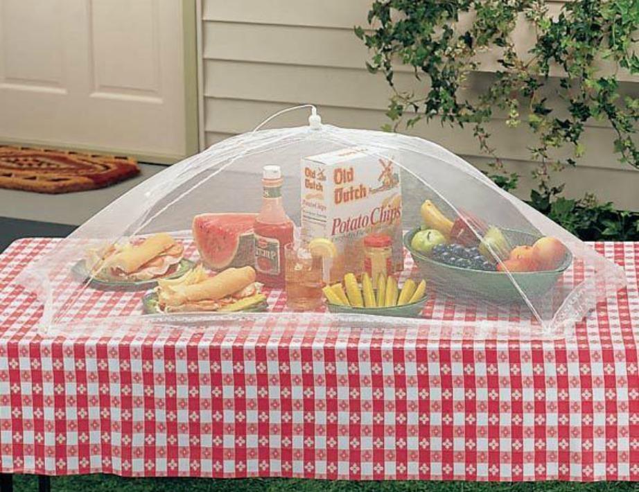 Κάντε ένα πικνίκ ή ένα μπάρμπεκιου και σκεπάστε τα τρόφιμα με το πάνω μέρος μιας ομπρέλας.