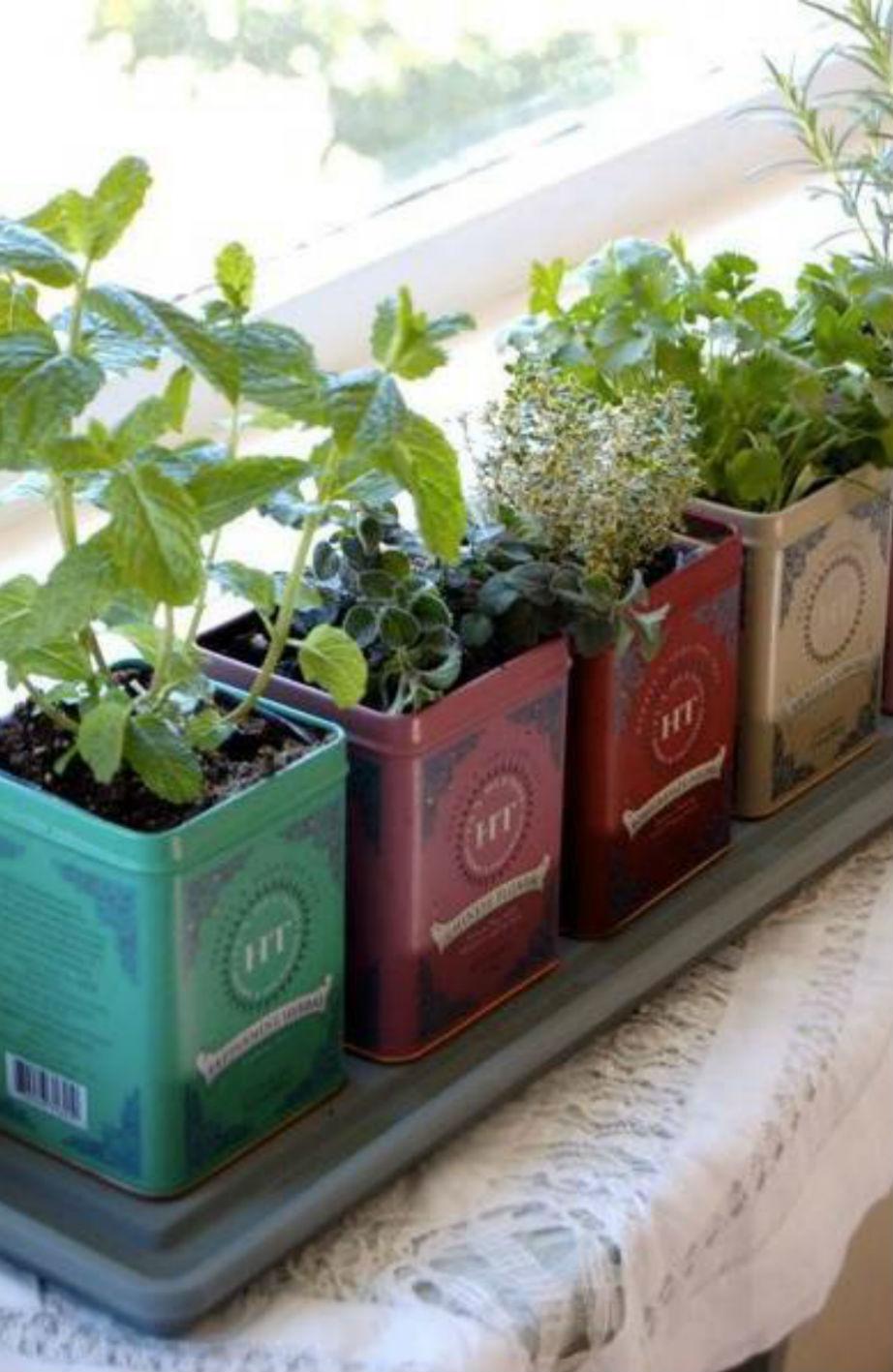 Τα βότανα θα κάνουν το χώρο σας πιο μυρωδάτο!