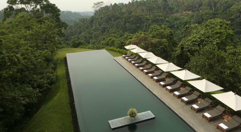Μέσα σ' ένα καταπράσινο τοπίο δεσπόζει η μαγευτική ορθογώνια πισίνα του ξενοδοχείου.