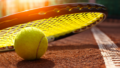 thehomeissue_tennis06