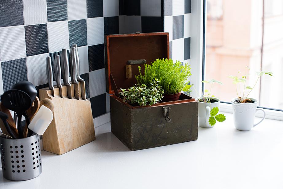 Ακόμη και στον πάγκο της κουζίνας μερικές φυσικές πράσινες πινελιές θα σας φτιάχνουν τη διάθεση.