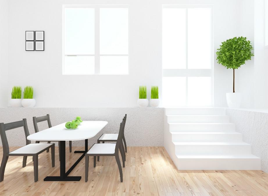 Τα φυτά εσωτερικού χώρου καθαρίζουν την ατμόσφαιρα του δωματίου και φυσικά το ομορφαίνουν.