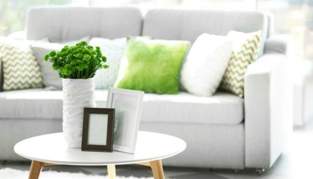 Διώξτε τις Άσχημες Μυρωδιές από το Σπίτι με τους πιο Δοκιμασμένους Τρόπους