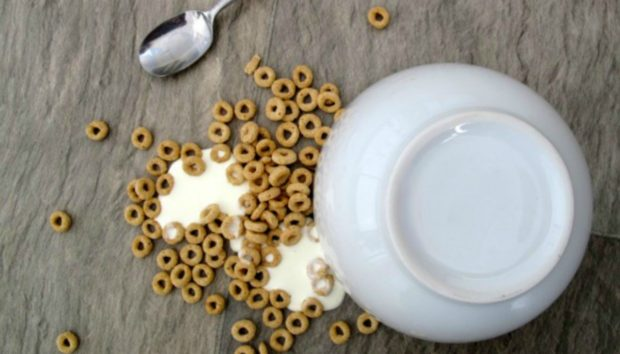 DIY: Μπορούν τα Πλαστικά Πιάτα και Μπολ να Μείνουν Ακίνητα Πάνω στο Τραπέζι;