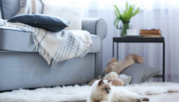 Δεν Φαντάζεστε με τι Τρόπο θα Κρατήσετε το Σπίτι σας Ζεστό!
