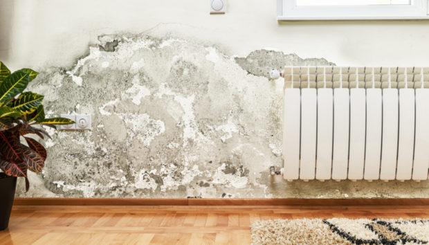 Μήπως οι Τοίχοι σας Έχουν Υγρασία; Εξαφανίστε την μια και Καλή!