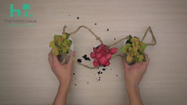 3 Μοναδικά Γλαστράκια & 1 Ποτιστήρι Έτοιμα σε 10'! Μόνο στο spirossoulis.com! (VIDEO)