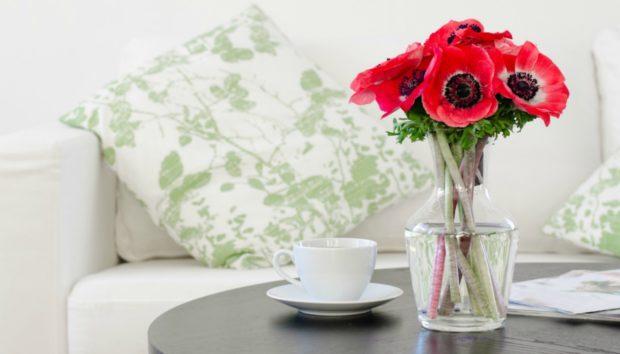 Κάθε Δωμάτιο του Σπιτιού σας θα Μυρίζει σαν Ανοιξιάτικος Παράδεισος με Αυτόν τον Τρόπο!