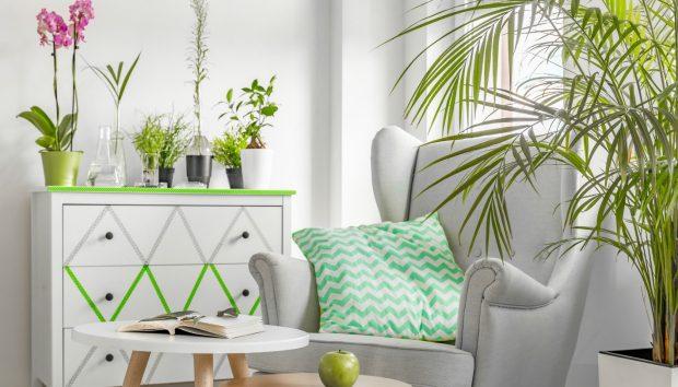 Μικρό Σπίτι: Αυτά Είναι τα Λάθη που Κάνετε και Δείχνει Μικρότερο