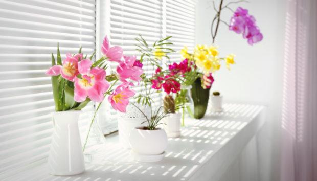 Ιδέες για να Μεταμορφώσετε το Σπίτι σας με Λίγα Μόνο Λουλούδια!