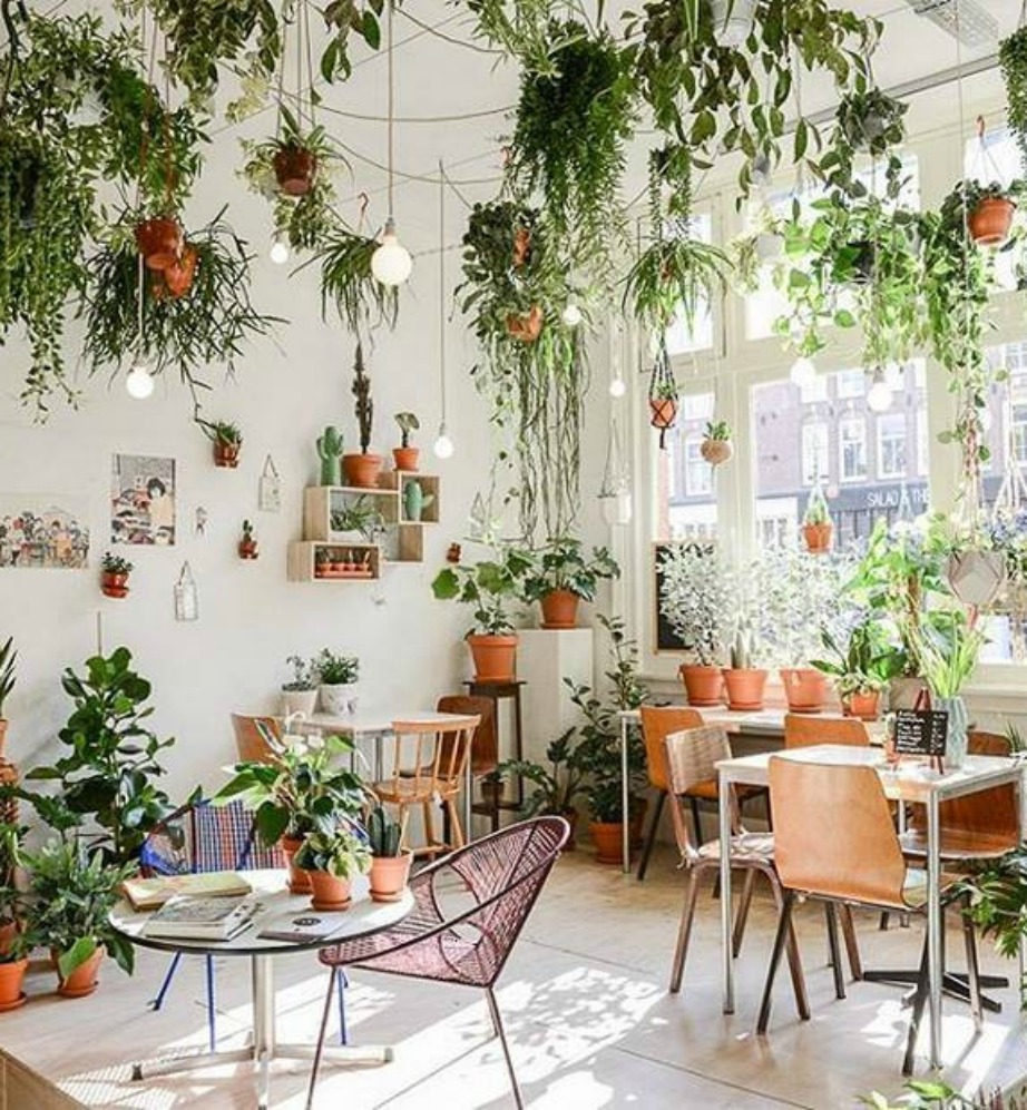 35 Indoor Garden Ideas To Green Your Home: 12 Υπέροχες Βεράντες Πόλης που μας Κάνουν να Ζηλεύουμε
