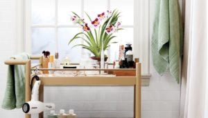 αντικείμενα οργάνωσης μπάνιου