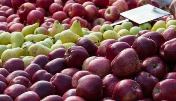 Αυτά Είναι τα Φρούτα και τα Λαχανικά του Φθινοπώρου