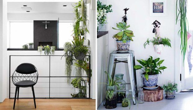 10 Μικροί Εσωτερικοί Κήποι που θα Αλλάξουν τον... Αέρα του Σπιτιού σας
