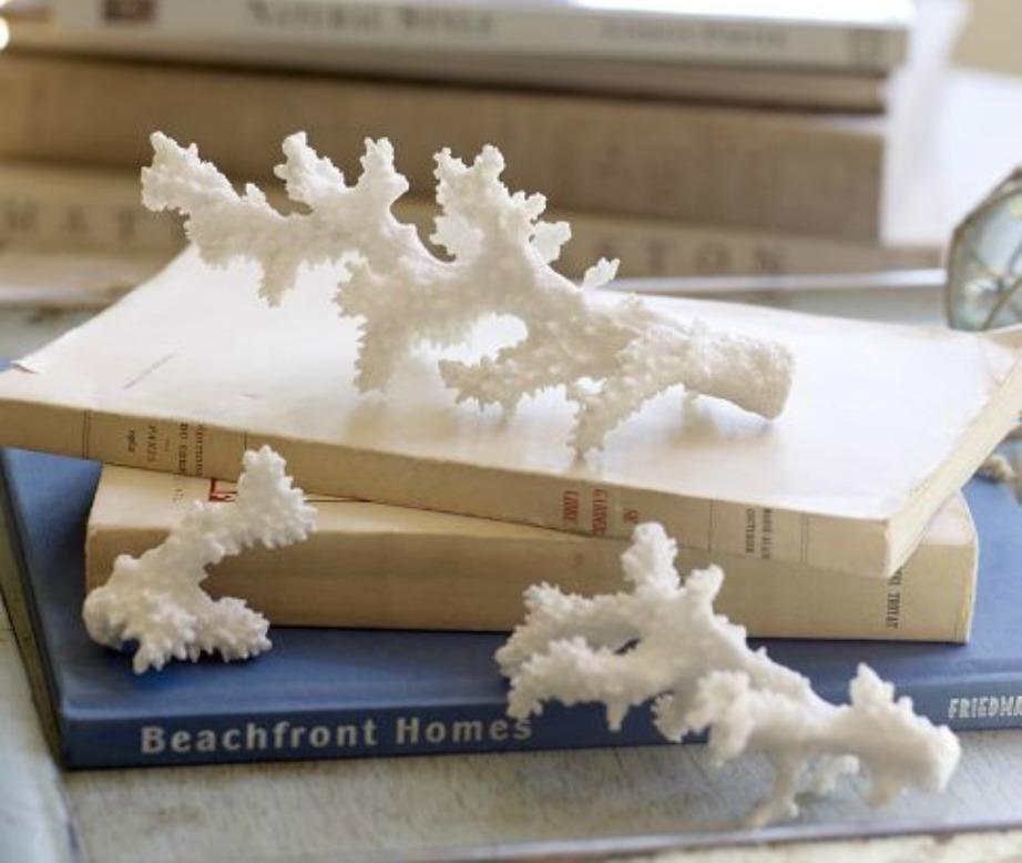 Διακοσμήστε τα βιβλία σας με κοχύλια και αντικείμενα του βυθού..