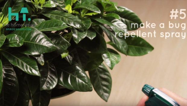 7 Χρήσεις του Απορρυπαντικού Πιάτων που θα σας Λύσουν τα Χέρια, από το spirossoulis.com (VIDEO)