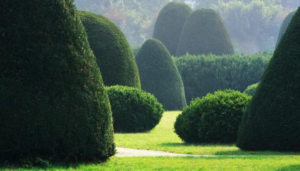 11 Αγγλικοί Κήποι που Μοιάζουν να Βγήκαν από Παραμύθι