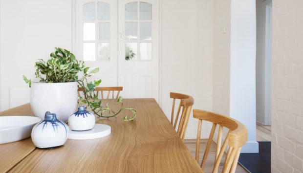 5 Φυτά που Μπορούν να Επιβιώσουν με Ελάχιστο Φως