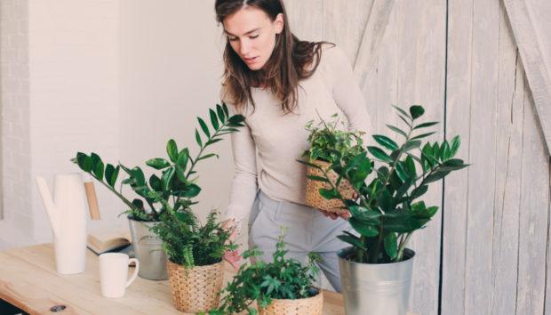 10 Πανέμορφες Ιδέες για να Κάνετε το Σπίτι σας Ένα με τη Φύση!