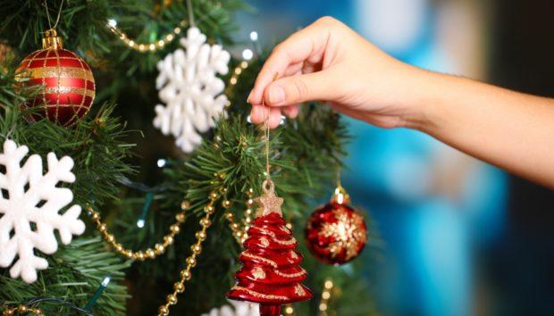 Το πιο Ιδιαίτερο Χριστουγεννιάτικο Στολίδι για το Δέντρο σας Είναι Αυτό!