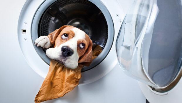 9 Πράγματα που δεν Πρέπει να Καταλήξουν Ποτέ στον Κάδο του Πλυντηρίου Ρούχων