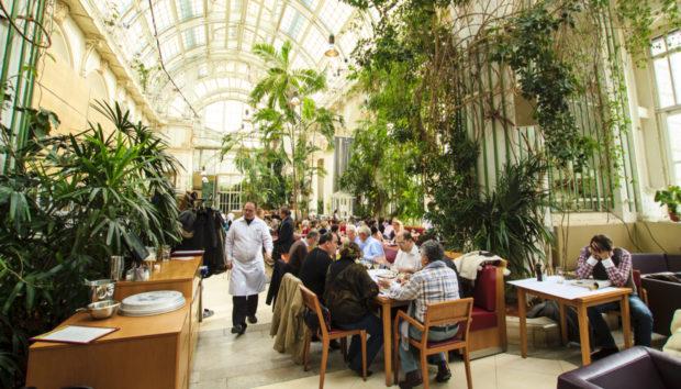 5 Καταπράσινα Καφέ στο Κέντρο της Αθήνας για Ανοιξιάτικες Βόλτες!