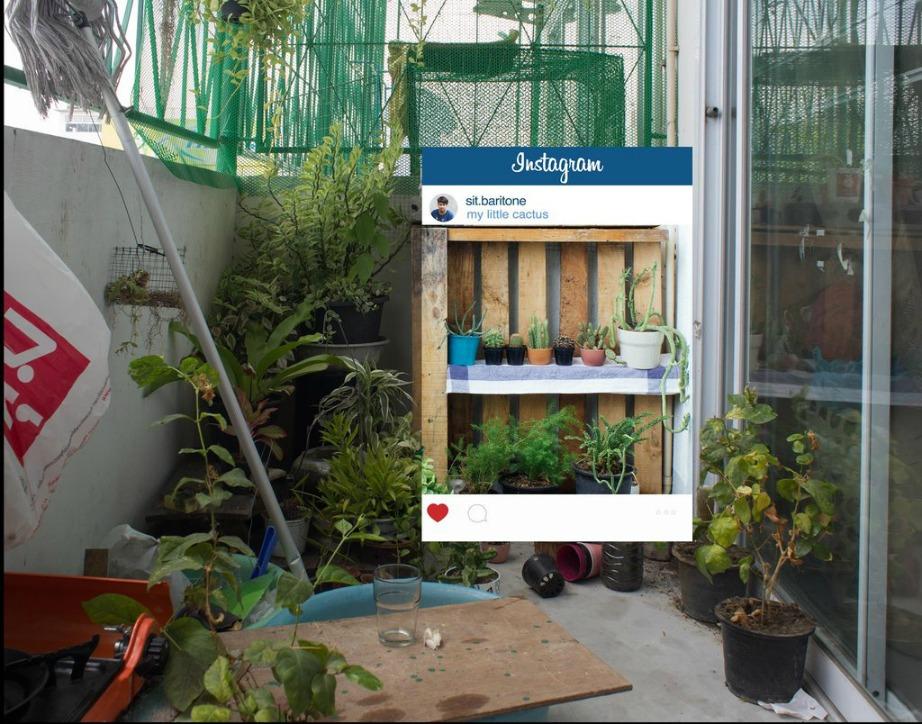 Μπορεί ο κήπος σας να μοιάζει εμπόλεμη ζώνη αλλά με την κατάλληλη φωτογραφία θα παρουσιάσετε αυτό που εσείς θέλετε!