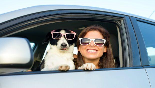 Απίστευτο Κόλπο για να Διατηρείτε Δροσερό το Εσωτερικό του Αυτοκινήτου