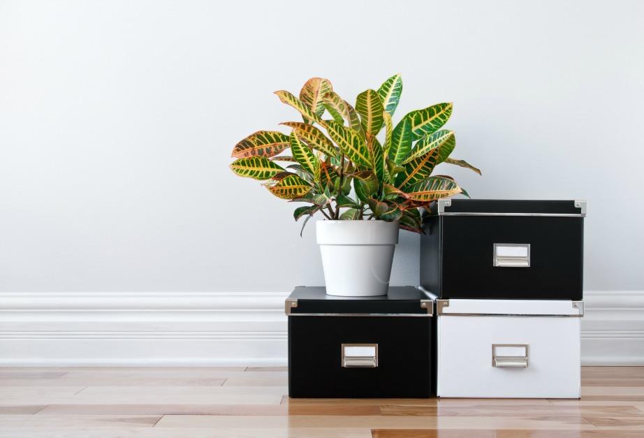 Οργανώστε τα αντικείμενα που δεν έχουν σχέση με την κουζίνα σε κουτιά αποθήκευσης!