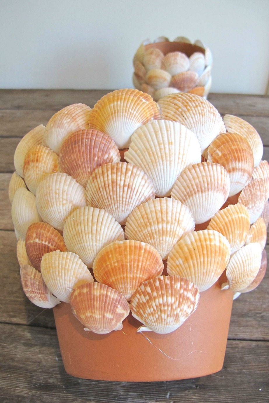 thehomeissue_shells04