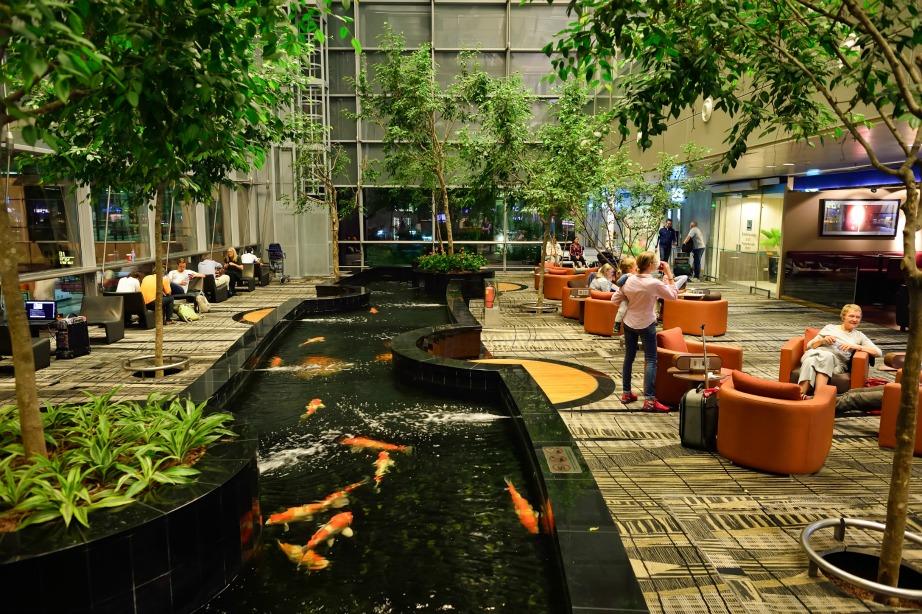 Το αροδρόμιο στην Σιγκαπούρη με τους κήπους, τις λίμνες και ό,τι άλλο μπορείτε να φανταστείτε.