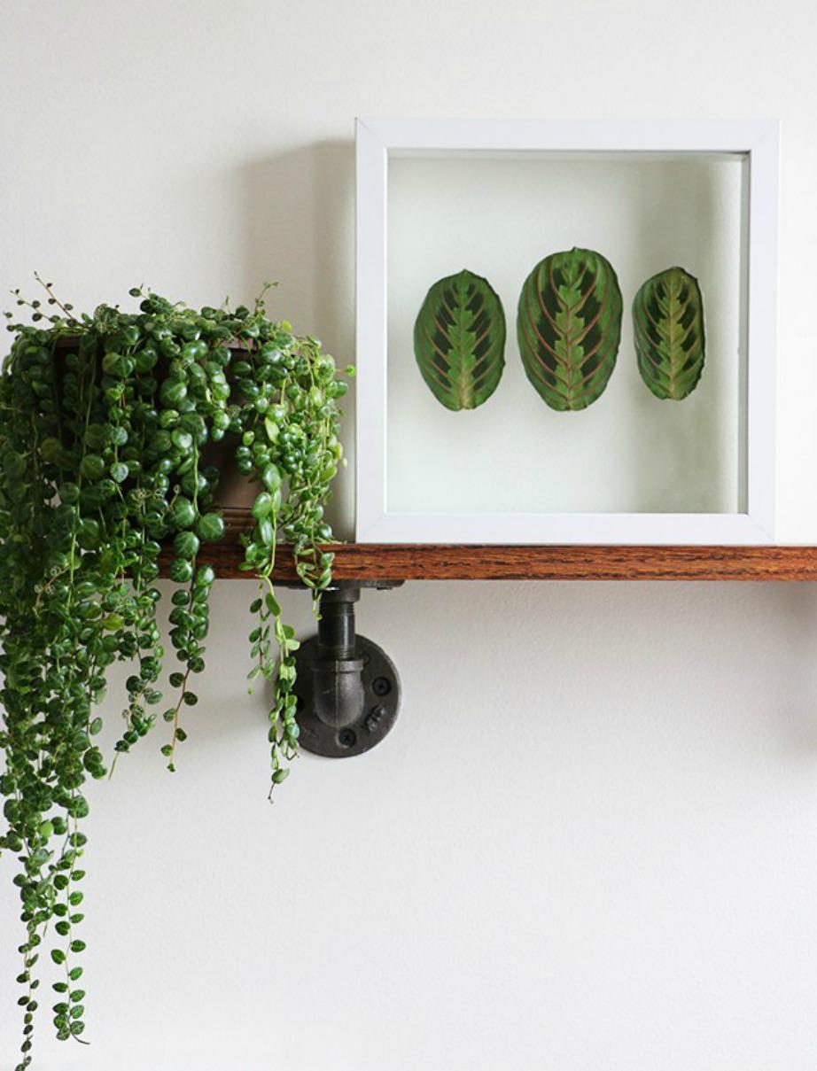 Φτιάξτε τα Δικά σας Καλοκαιρινά Έργα Τέχνης... από Φυτά