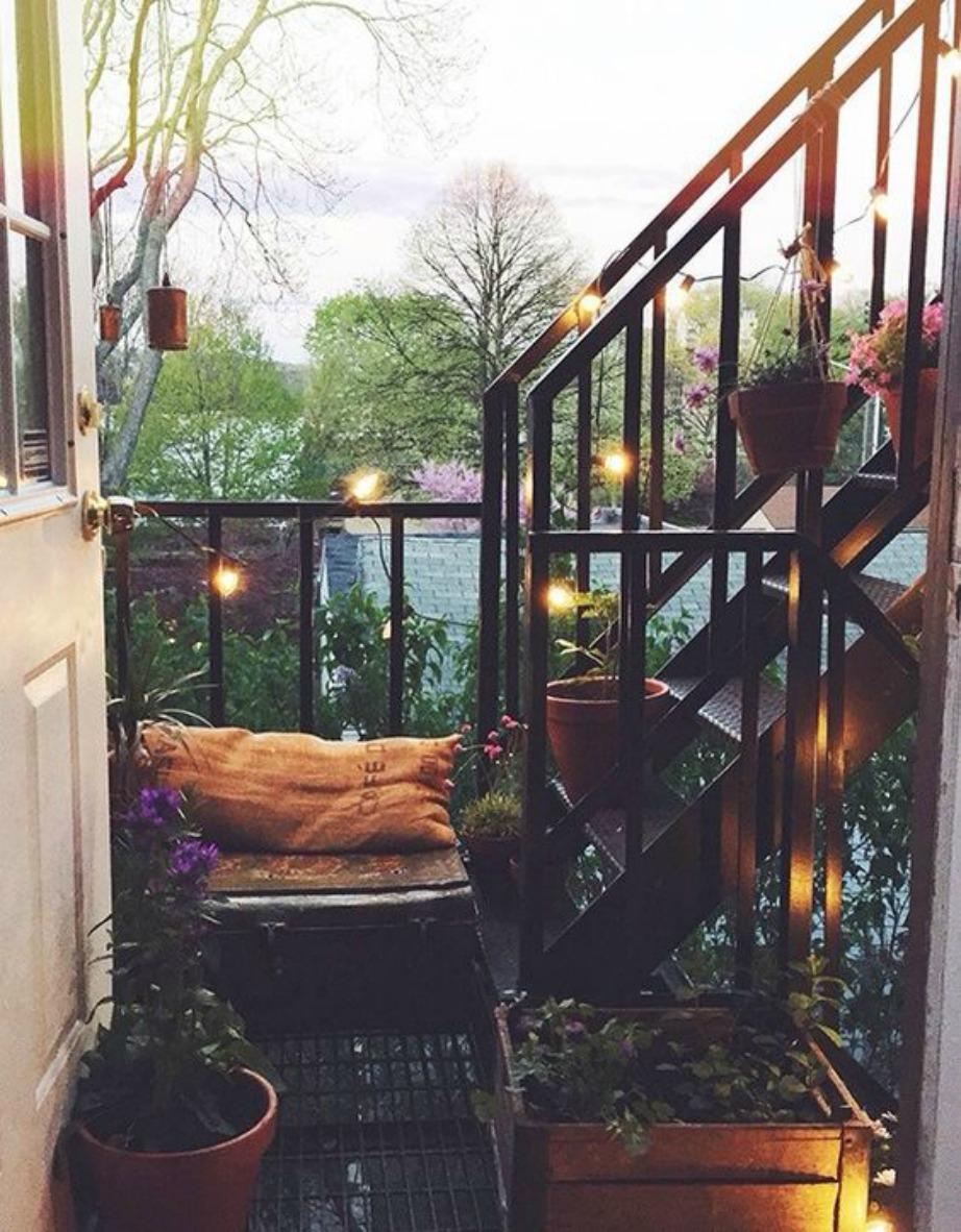 Το φθινόπωρο είναι ιδανική εποχή για να φυτέψετε διάφορα καλλωπιστικά φυτά και μυρωδικά που εκτός των άλλων θα ομορφύνουν και την βεράντα σας.