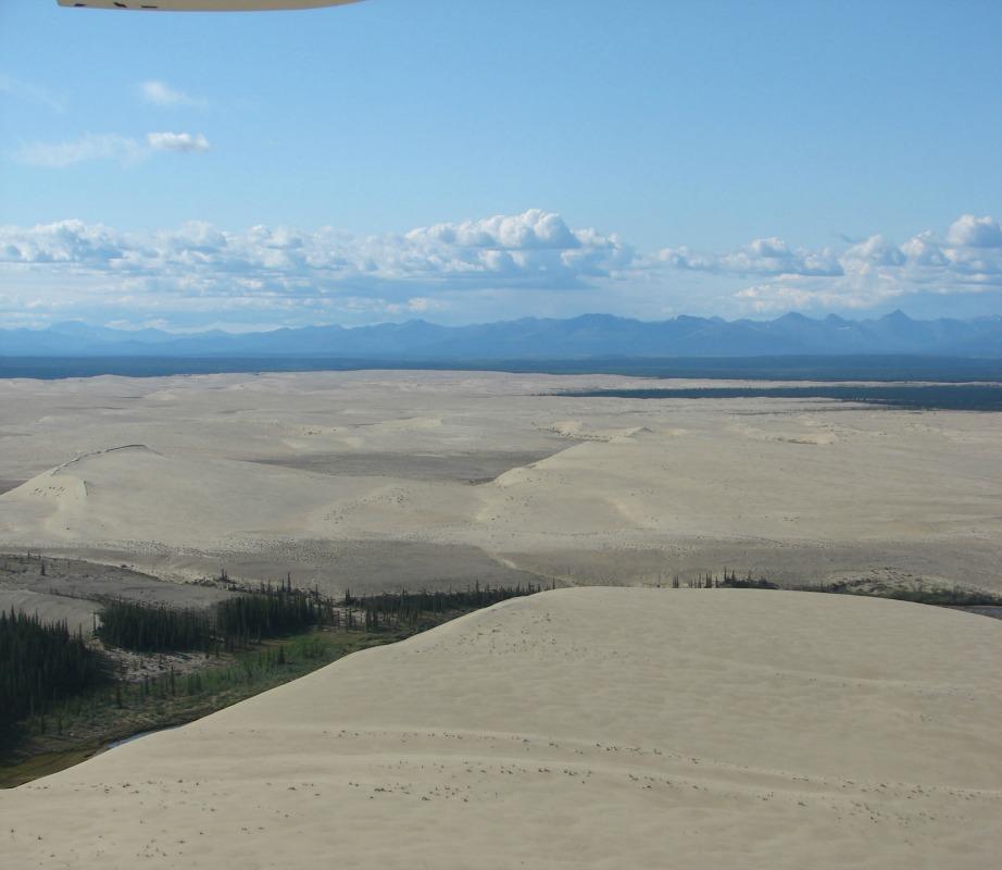 Αμμόλοφοι σε έρημο στην Αλάσκα
