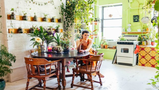 Δείτε το Απίστευτο Διαμέρισμα με τα 500 Φυτά!
