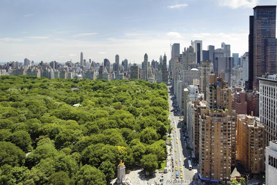 Η μοναδική θέα του διαμερίσματος στο Central Park το αναβαθμίζει τόσο στην ομορφιά όσο και στην τιμή.
