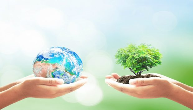 Ημέρα της Γης: Σώστε τον Πλανήτη και την Τσέπη σας Κάνοντας Αυτά!