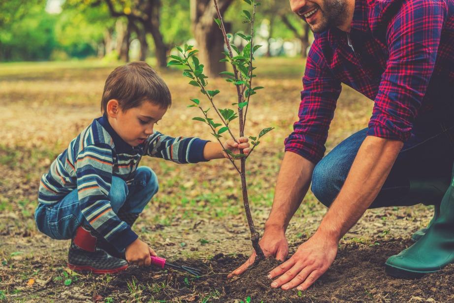 Αν κάθε άνθρωπος φύτευε από ένα δέντρο, ο πλανήτης μας θα ήταν πιο πράσινος!