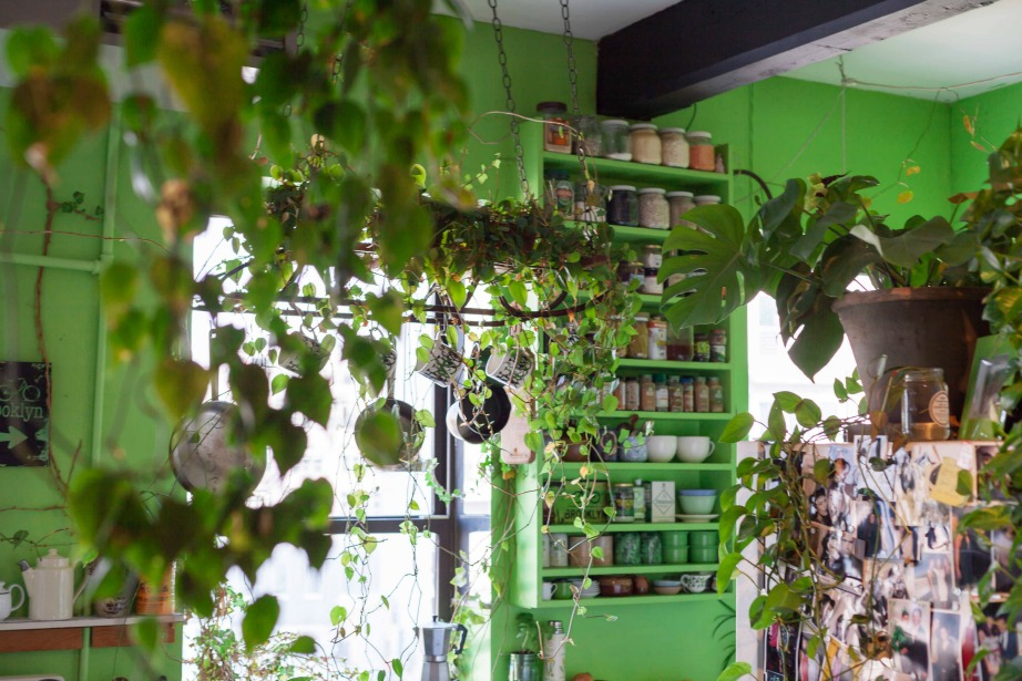 thehomeissue_(greenhouse)07