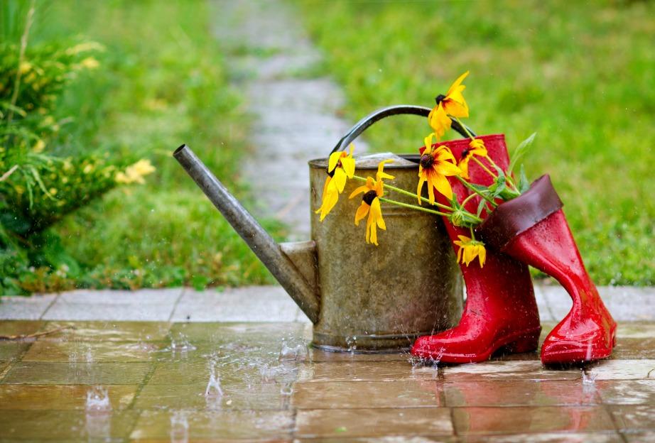 Εκμεταλλευτείτε το νερό της βροχής!