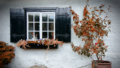 thehomeissue_autumn01