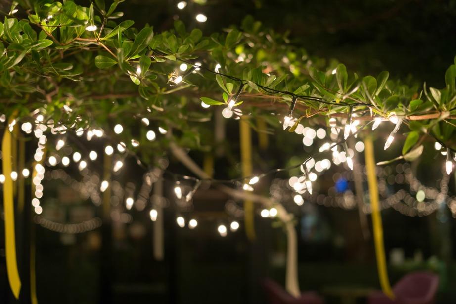 Τα ηλεκτρικά φωτάκια θα δώσουν την ιδανική ατμόσφαιρα στο πάρτι σας.