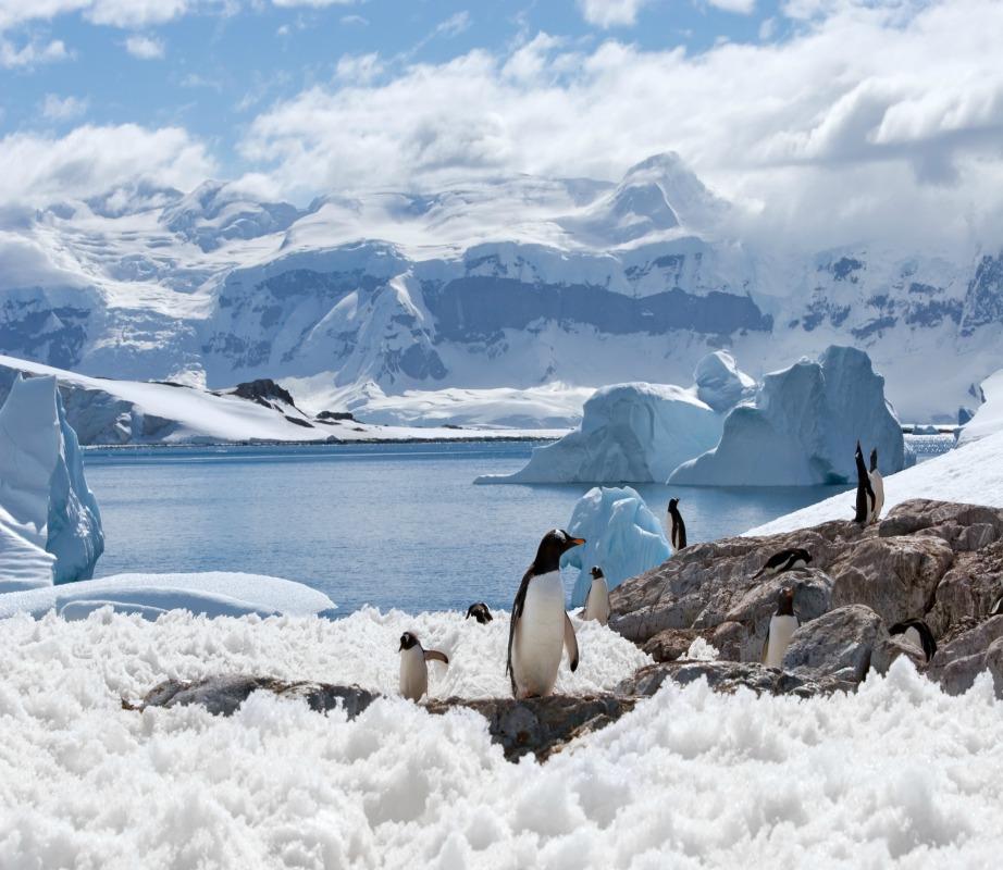 Η Ανταρκτική είναι η μεγαλύτερη έρημος του πλανήτη.