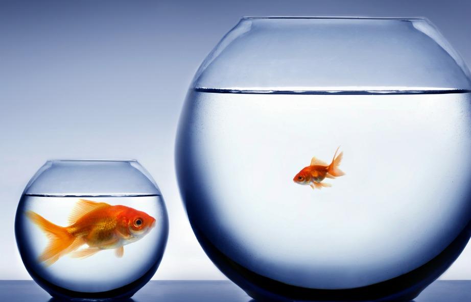 Εσείς είστε αυτοί που ρυθμίζετε τον ωκεανό δυνατοτήτων της ζωής σας.