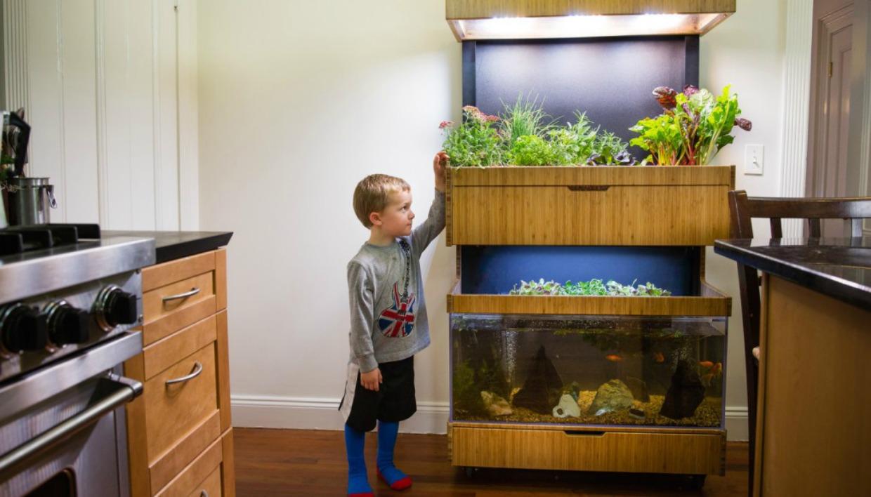 Ο κήπος θα σας κάνει να ασχοληθείτε πιο πολύ με τη φύση, ενώ ταυτόχρονα θα σας παρέχει υγιεινά τρόφιμα.