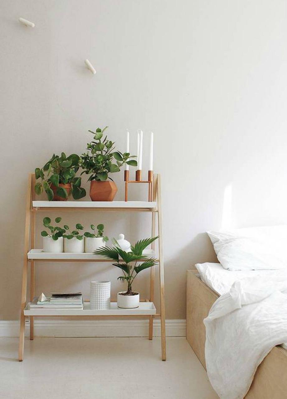 Αν το ροζ είναι η αγαπημένη σας απόχρωση τότε μπορείτε να το βάλετε στους τοίχους του δωματίου σας σε αυτή την παλ εκδοχή του.