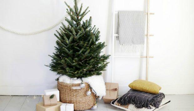 Φτιάξτε Μόνοι σας Ένα Μικρό Χριστουγεννιάτικο Δέντρο για το Σαλόνι σας!