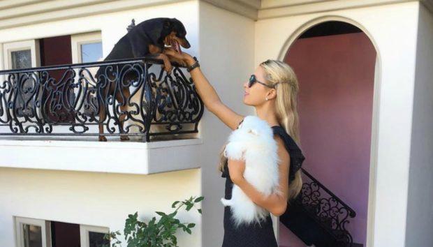 Αυτή Είναι η Έπαυλη που Μένουν τα Σκυλιά της Paris Hilton!