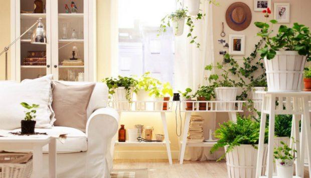Βάλτε το Καλοκαίρι στο Σπίτι σας με τον πιο Οικονομικό Τρόπο!