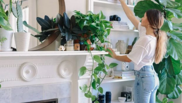 Ένα Διαμέρισμα στο Σαν Φρανσίσκο Γεμάτο Φυτά και Φως!